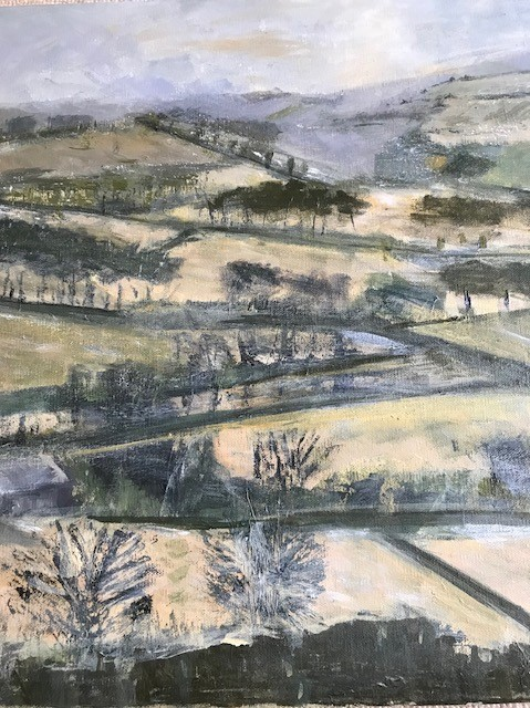 winter near tregaron
